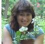 Диплолаена (Diplolaena grandiflora) - последнее сообщение от MMaria